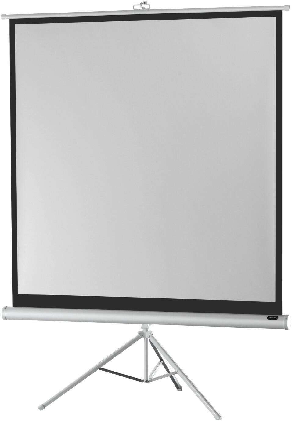 celexon Stativleinwand Economy 219 x 219 cm - White Edition