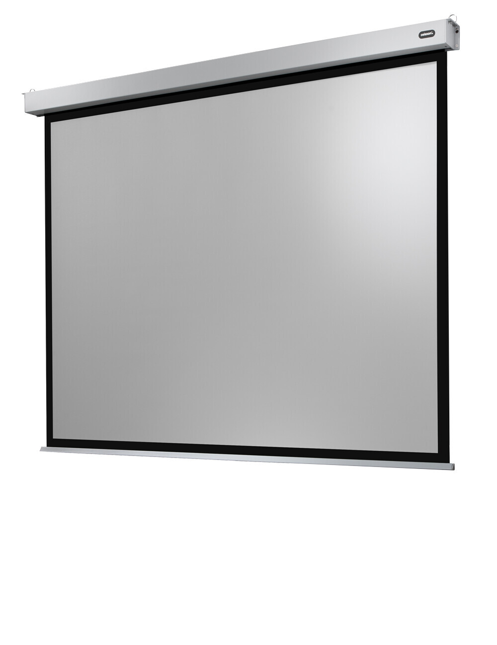 Celexon Electric Professional Plus Screen 280 x 210 cm