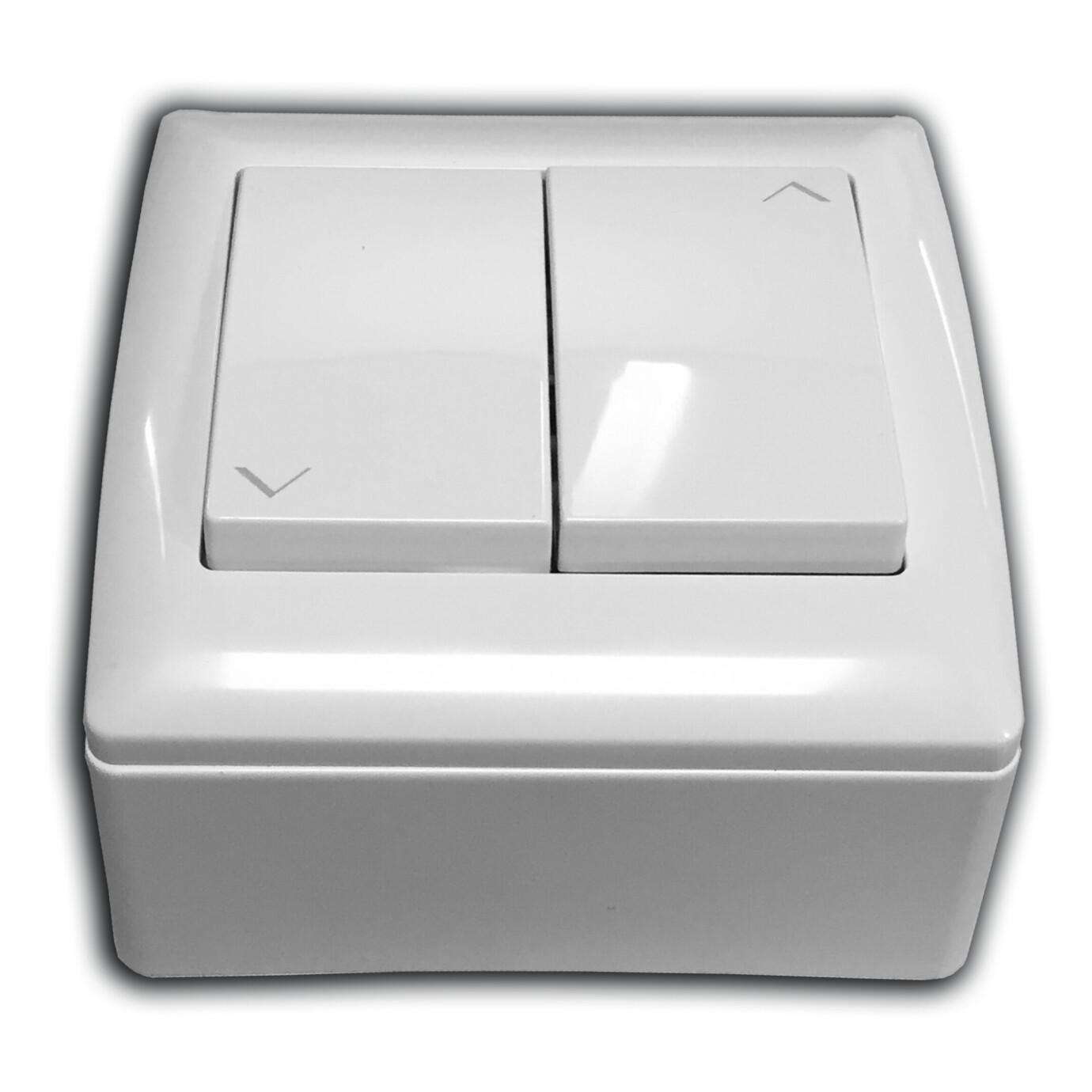Interruptor de pared Celexon para pantallas Motorizadas Expert y Expert XL