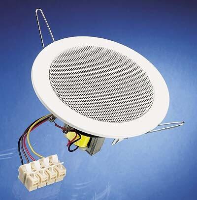 Visaton DL 10 - 100 V