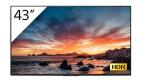 Sony FWD-43X80H/T