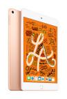 Apple iPad mini WiFi 256 GB Gold