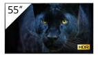 Sony FWD-55A8/T/1 Écran professionnel OLED-BRAVIA 4K