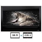 DELUXX Cinema Frame V-Adjustable 266 x 149 cm 16:9 / 21:9 CG